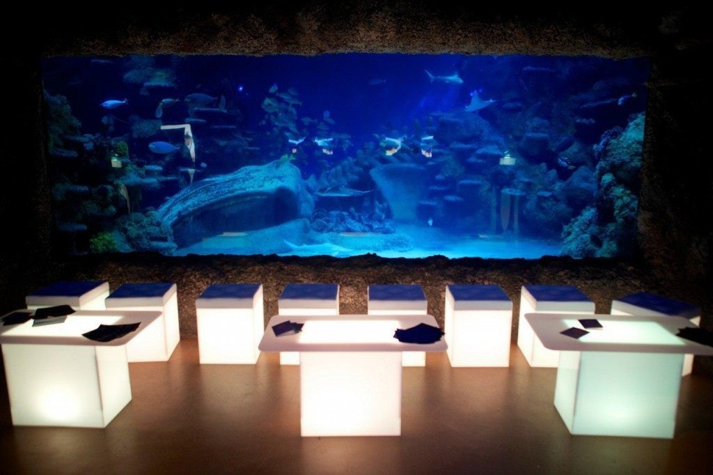 sea life london aquarium venue hire dinner venue. Black Bedroom Furniture Sets. Home Design Ideas