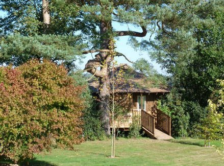 Fair Oak Farm Eco-Lodge Tree House