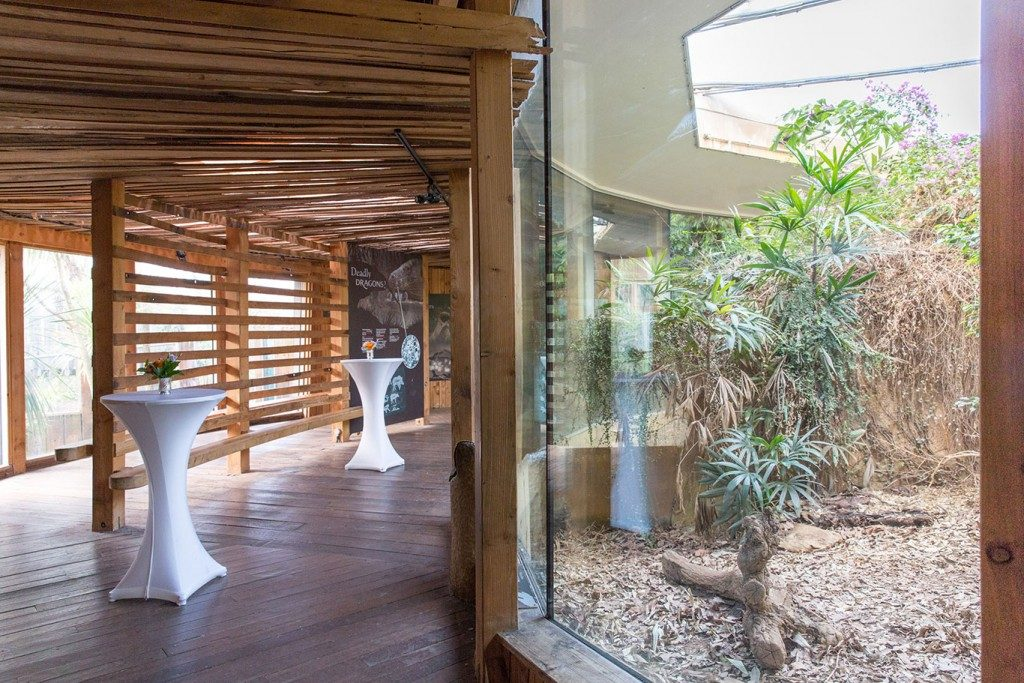 Komodo Dragon house London Zoo