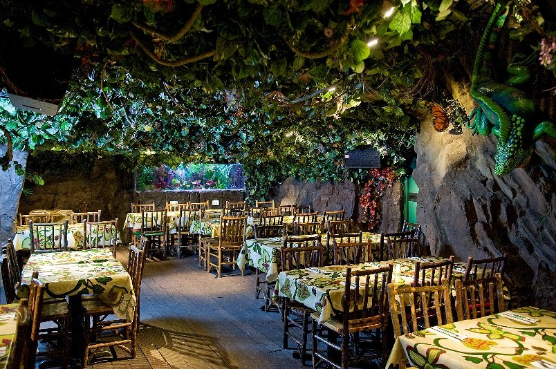 Rainforest Cafe Las Vegas Reservations