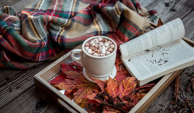 blanket cocoa and a book